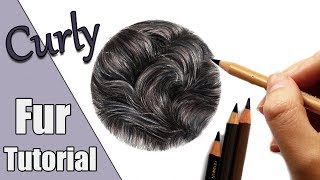 How To Draw Black Curly Fur In Colored Pencil!