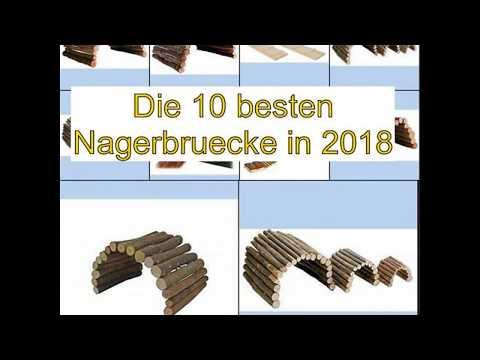 Die 10 besten Nagerbruecke in 2018