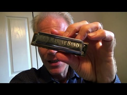 What harmonica should a beginner use–and NOT use?