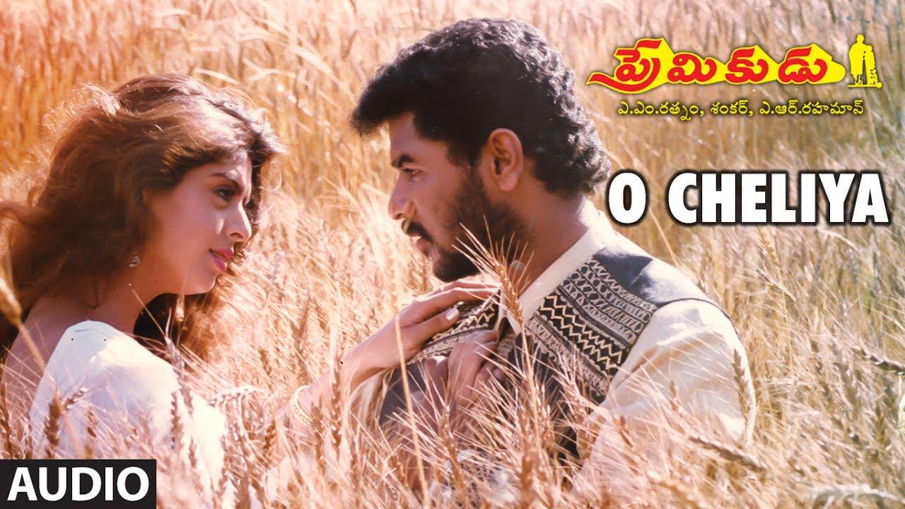 O Cheliya Naa Priya Sakhiya Song Lyrics Telugu English