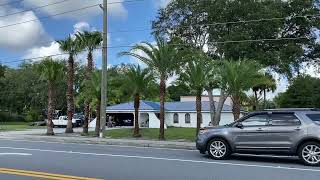 Installing Palms Along Road and Drive