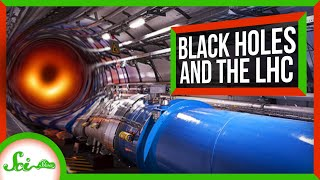 What If the Large Hadron Collider Made a Black Hole?