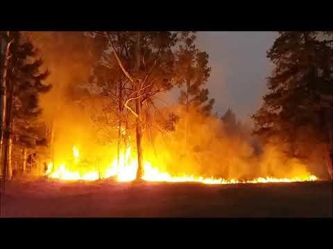 El incendio que durante dos días se mantuvo en la zona de Villa Zorraquín