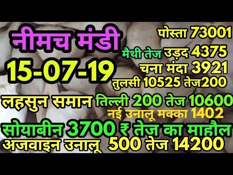 नीमच मंडी भाव 15-07-19, मंडी भाव , Mandi Rate, Neemuch mandi bhav, neemuch mandi bhav in hindi 2019