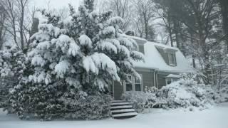 Winter Cabin in a Snowstorm   Falling Snow & Heavy Winds Blowing