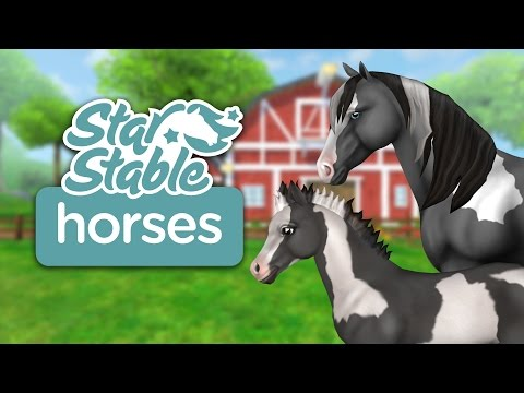 Star Stable Horses Video