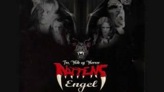 #06 True Believer (D-A-D) - Soundtrack Nattens Engel.wmv