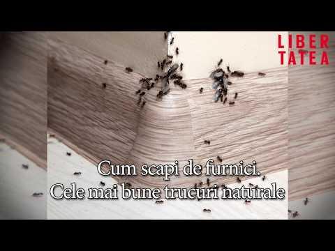 Artroza tratamentului articulației gleznei
