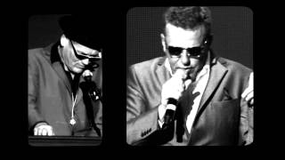 Madness Never Knew Your Name Official Video