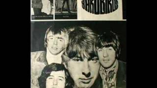 Got To Hurry-Yardbirds