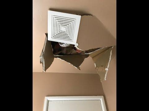 Bathroom Ceiling Repair and Ventilation Fan Installation