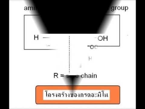 ผลิตภัณฑ์ Tianshi สำหรับโรคสะเก็ดเงิน