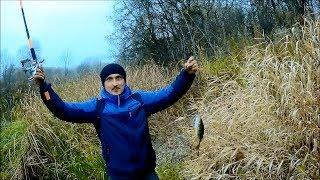 Рыбалка каменск шахтинский северский донец 2020
