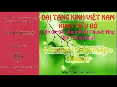 Kinh Tiểu Bộ - 046. Kinh Phật Thuyết Như Vậy - Chương 1: Một Pháp - Phẩm 1