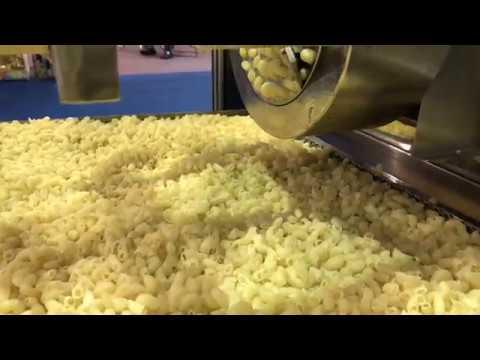 Automatic Pasta Processing Plant