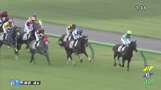 2018/05/26東京4R障害未勝利[サンホッブズ]上野翔