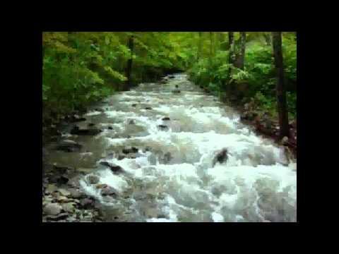 TJ Colatrella w/ Garth Hudson ~ Gypsy River ~