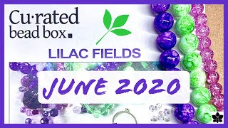 ✨ JUNE 2020 🎁 CURATED BEAD BOX  ✨ Monthly Beaded Jewelry Making Subscription | Beading, DIY Unboxing