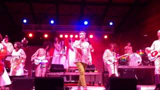 The Polyphonic Spree - My Umbrella 5/25/13