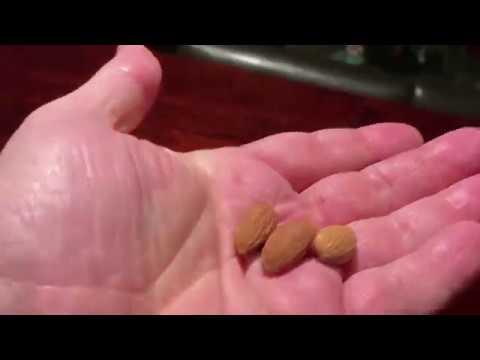 Sūrus maistas nuo hipertenzijos