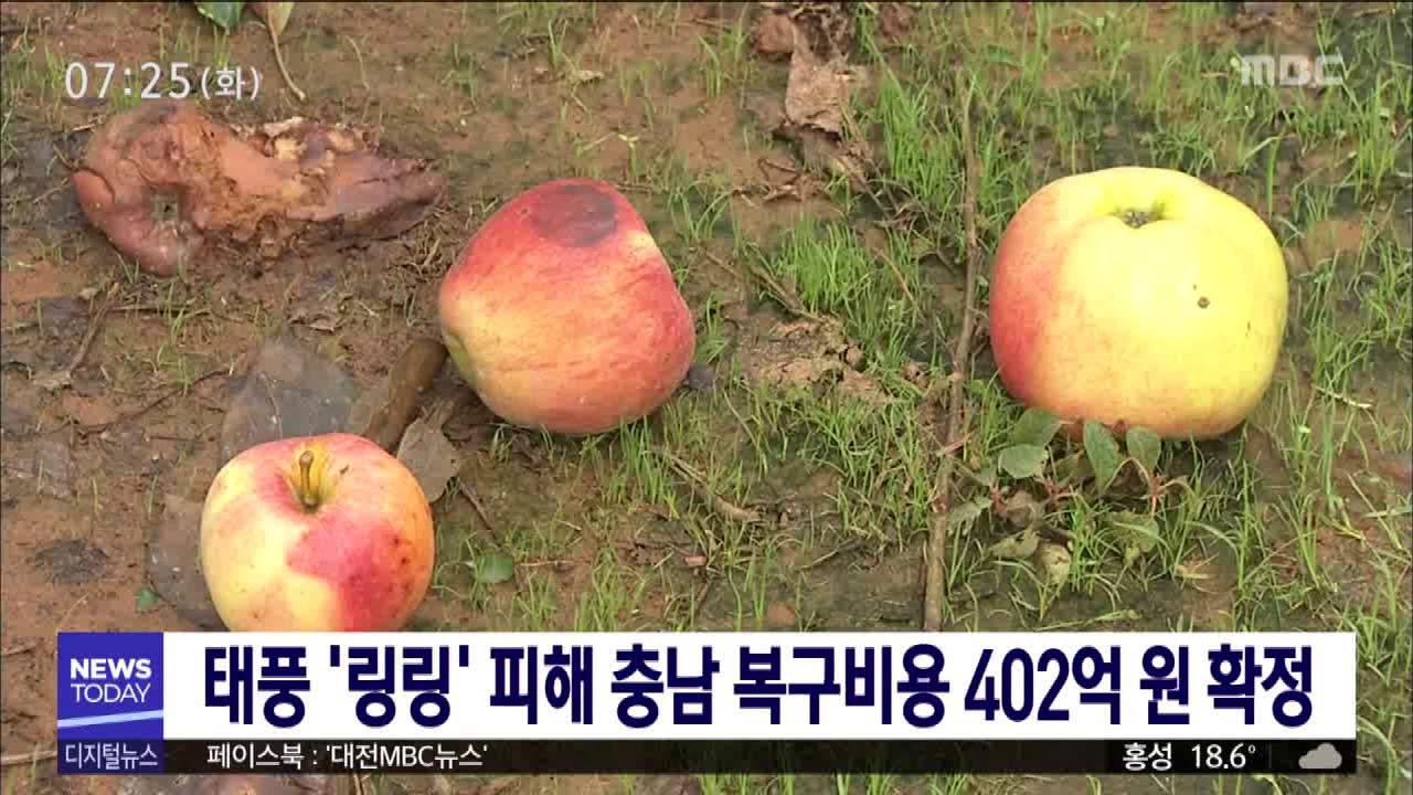 태풍 '링링' 피해 충남 복구비용 402억 원