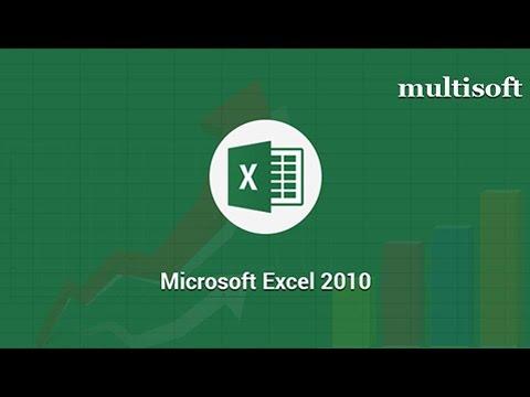Microsoft Excel 2010 Online Certification Training | Multisoft Virtual ...