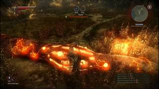 The Witcher 2 Kayran Boss Walkthrough