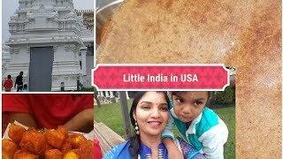 VLOG   LITTLE INDIA IN USA   NEW JERSEY