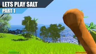 Lets Play - Salt - Part 1