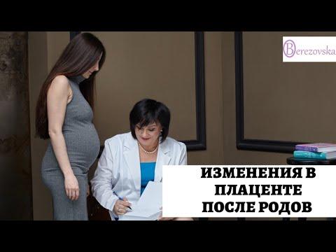Изменения в плаценте после родов - Др. Елена Березовская