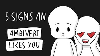 5 Signs An Ambivert Likes You