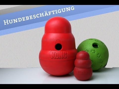 Hund beschäftigen Beschäftigung Snackball Kong Classic Wobbler Wohnung Hundespielzeug Boomer deutsch