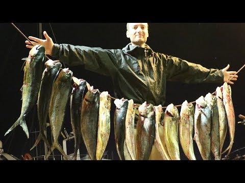 In linea del russo che pesca 3.0