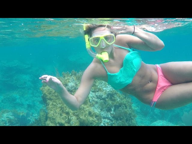 BVI 2015 Snorkeling the Indians and Norman Island