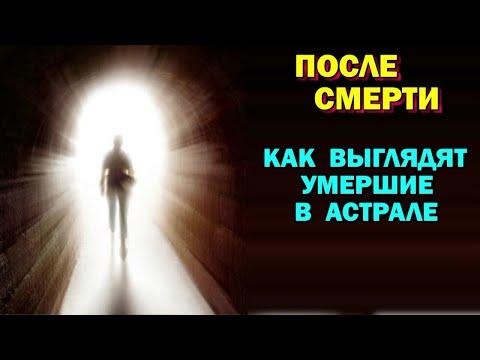 Скачать герои меча и магии 5 3.0 через торрент на русском