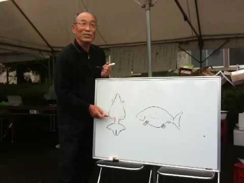 出雲ナンキン振興会  佐藤健次氏  ナンキンの説明1