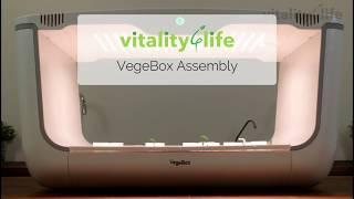 VEGEBOX HOME - домашняя садовая ферма Vegebox by BioChef - Home Box от компании интернет-магазин «Дарим тепло» - видео