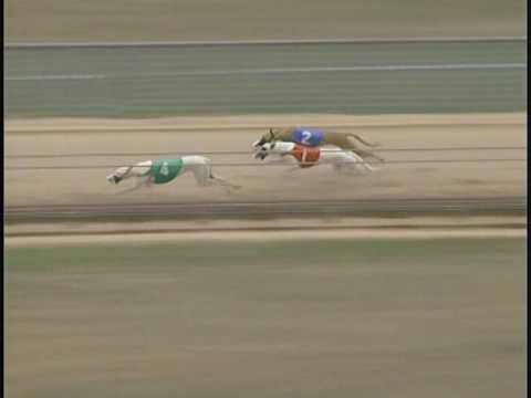 Race 49