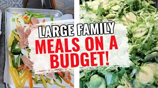 COOK WITH ME | LARGE FAMILY MEALS ON A BUDGET | WHAT'S FOR DINNER?