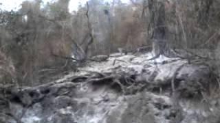 preview picture of video 'Quemazones en las yungas de Orán'