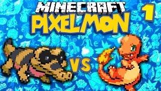 Sandile  - (Pokémon) - Sandile v Charmander ★ MINECRAFT POKEMON (PIXELMON, Ep.1)