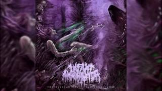 Infant Annihilator - Unholy Gravebirth *NEW 2016* w/ LYRICS