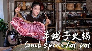 Let's have some lamb spine hot pot for Winter Solstice