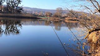 Рыбалка ловля рыбы на фидер в ноябре 2020