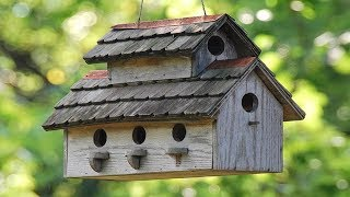 30 Amazing DIY Ideas To Build A BirdHouse