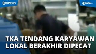 Viral Video TKA Asal Korea Tendang Karyawan Lokal di Subang saat Sedang Makan, Langsung Dipecat
