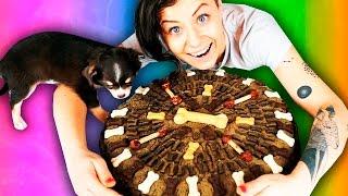 САМЫЙ ГИГАНТСКИЙ ТОРТ ДЛЯ СОБАКИ ! Безумный щенок играет, гигантский торт DIY Magic Family