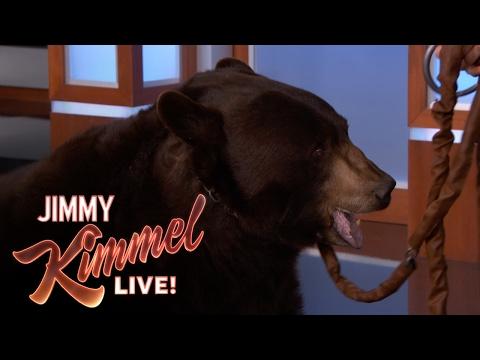 Wild Animals Show