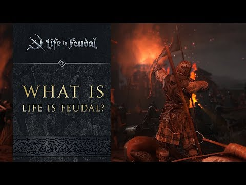 A Newcomer's Guide to Life is Feudal