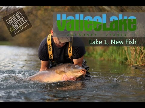 Vallee Lake, Lake 1 new stock of fish